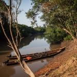 Bolivian Amazon: The Pampas