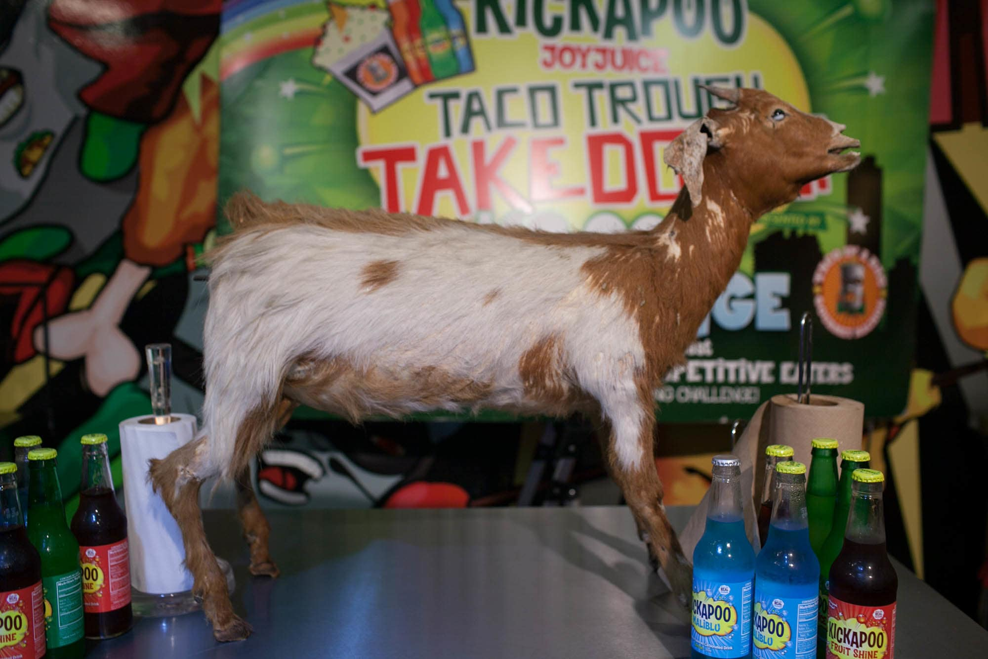 Taco in a Bag 40-pound Goat Eating Contest