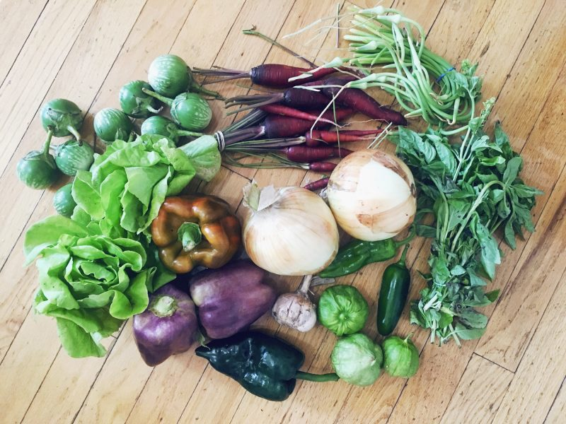 Haul of vegetables from Green City Market