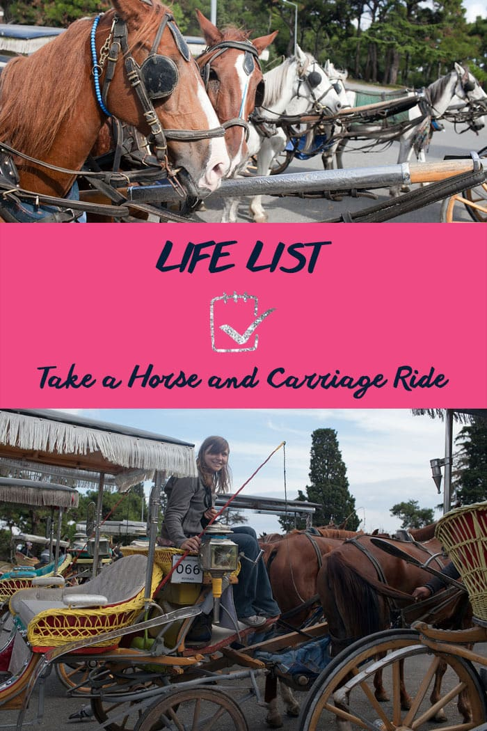 Life list: Take a Horse and Carriage Ride.