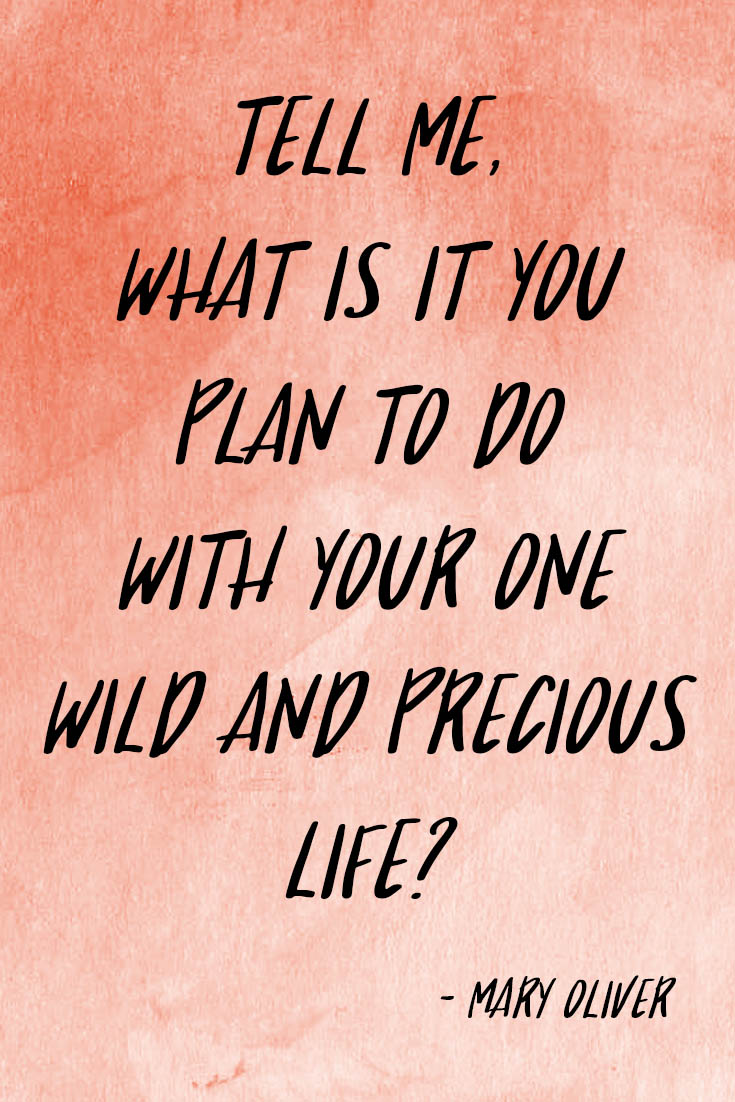 Tell me, what is it you plan to do/With your one wild and precious life? – Mary Oliver