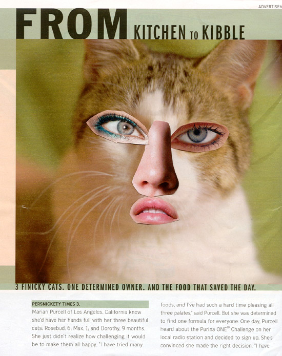Magazine Ad Cat with Human Features Art Project