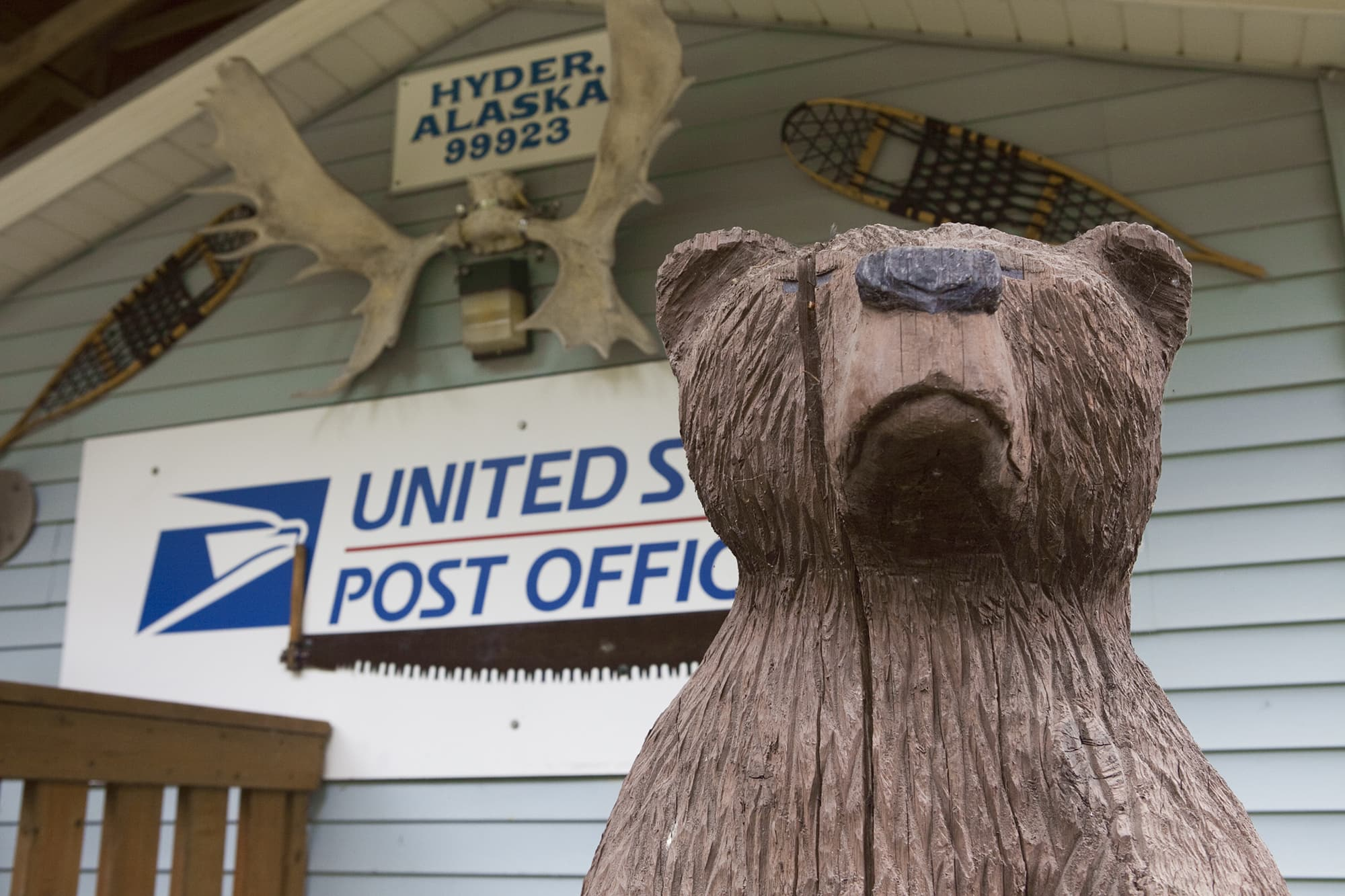 Bear in the post office in Hyder, Alaska - Things to do in Hyder, Alaska.