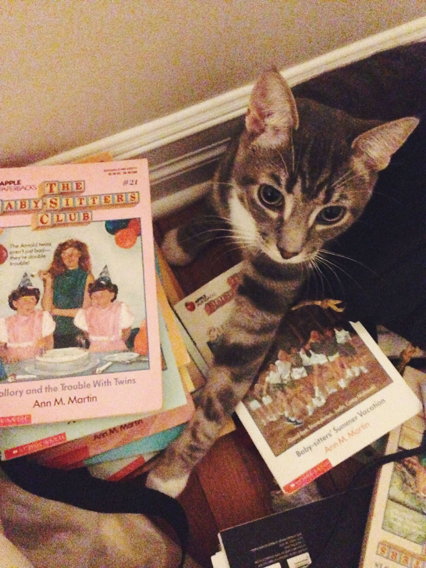 The cat is helping me read all the Baby-Sitters Club Books