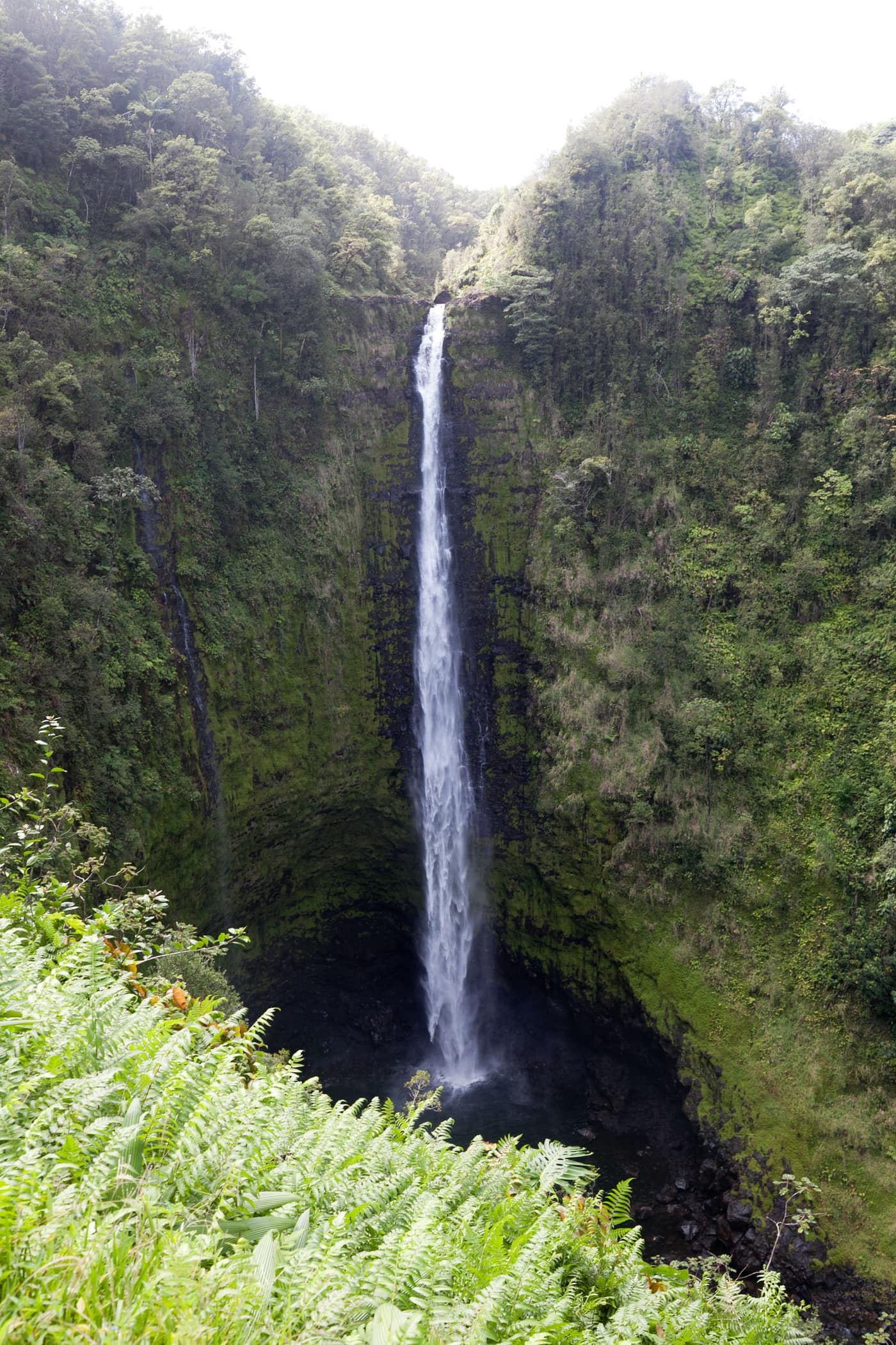 Big Island Waterfalls - Akaka Falls State Park on the Big Island, Hawaii.