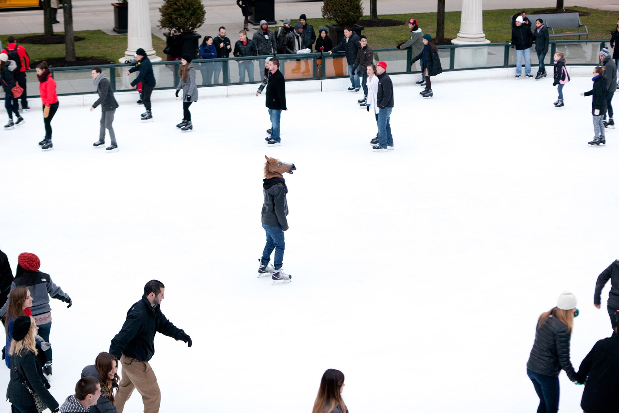 A horse ice skating at Millennium Park in Chicago, Illinois