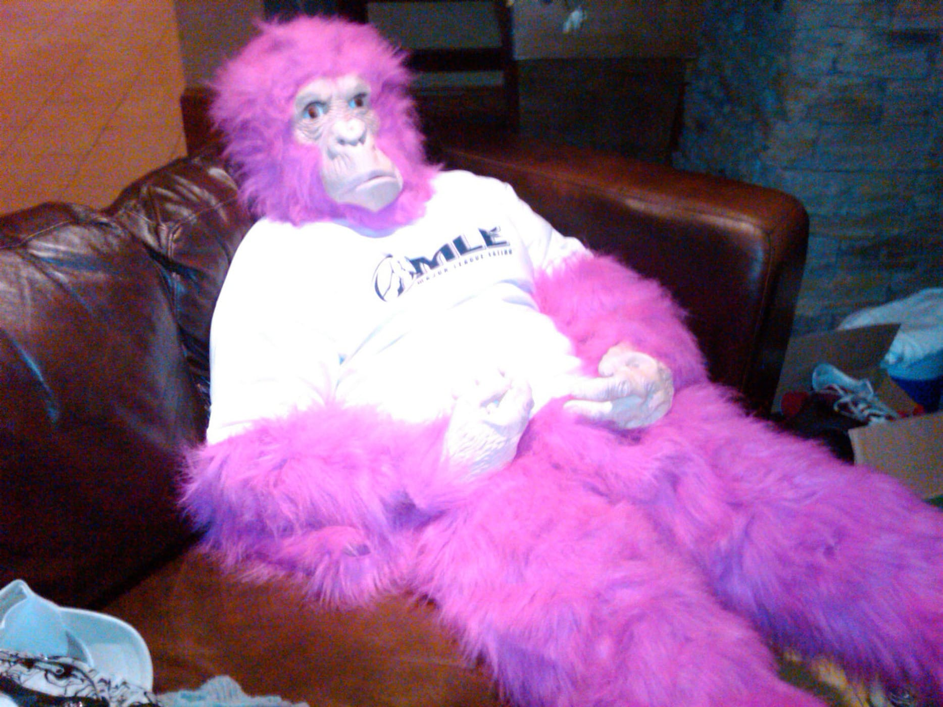 Tim Gravy Brown wears a hot pink gorilla suit at the World Cupcake Eating championship.