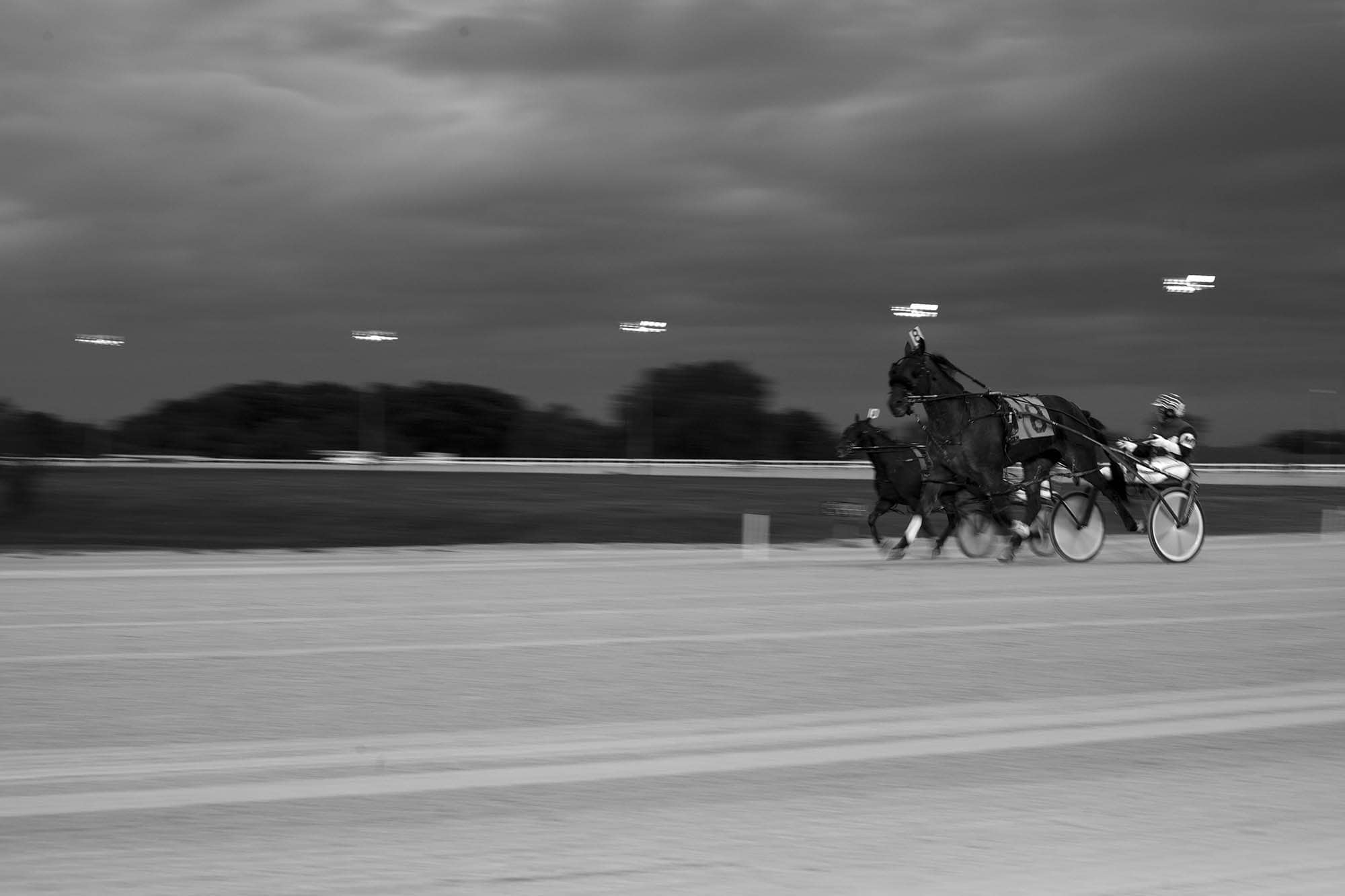 Photography assignment: Panning Motion - Horse races panned.