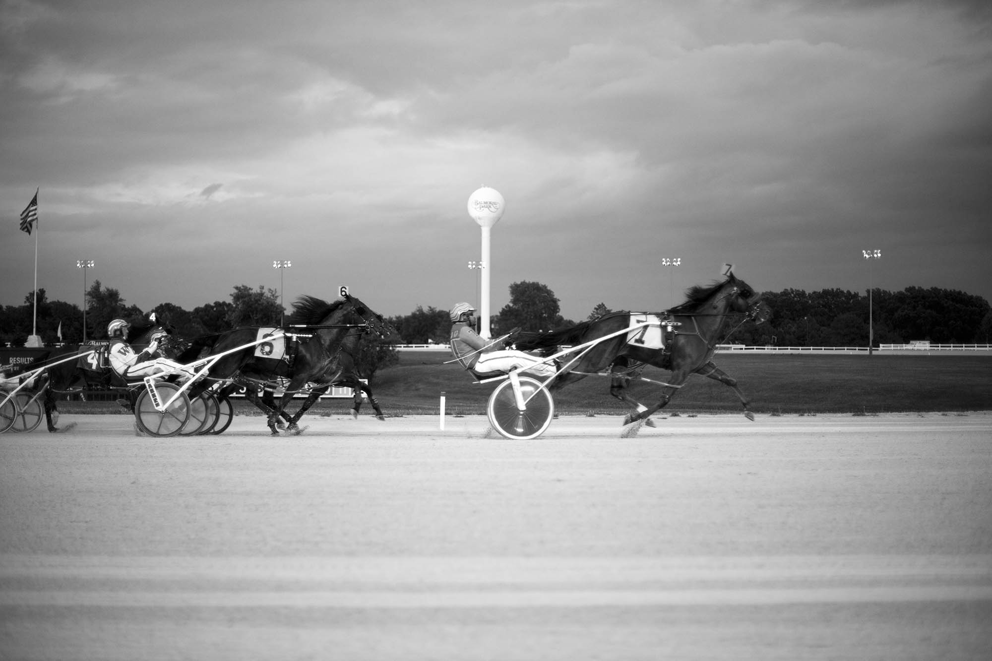 Photography assignment: Stop Motion - Horse racing stopped in action.