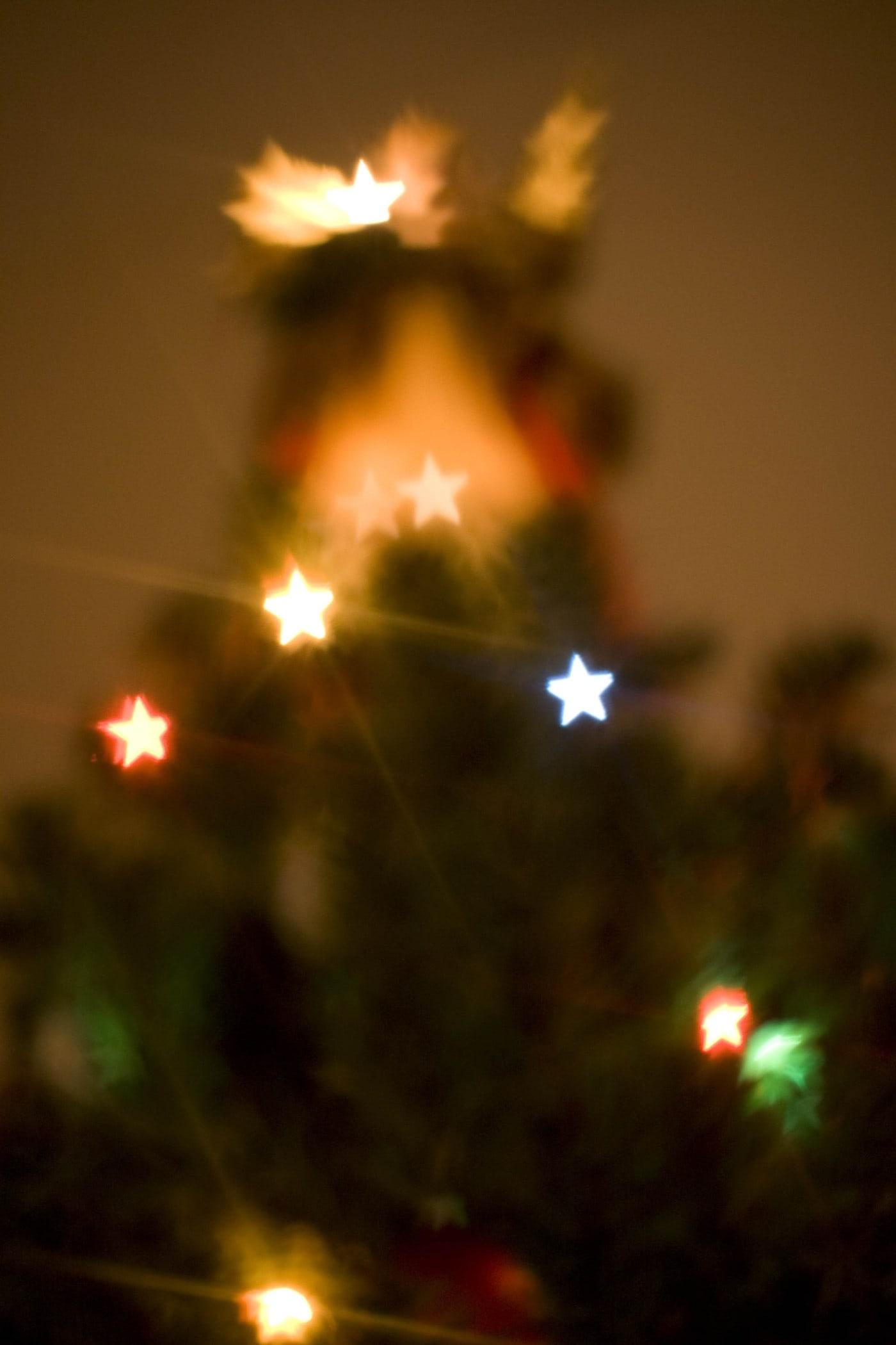 Christmas tree photos with a homemade bokeh star lens