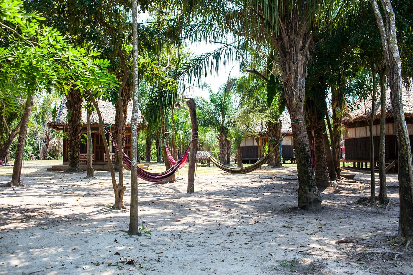 Hammocks - The Pampas in the Bolivian Amazon