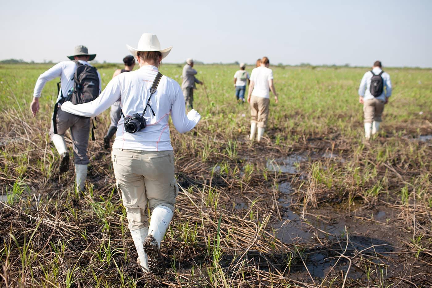 Anaconda hunting - The Pampas in the Bolivian Amazon