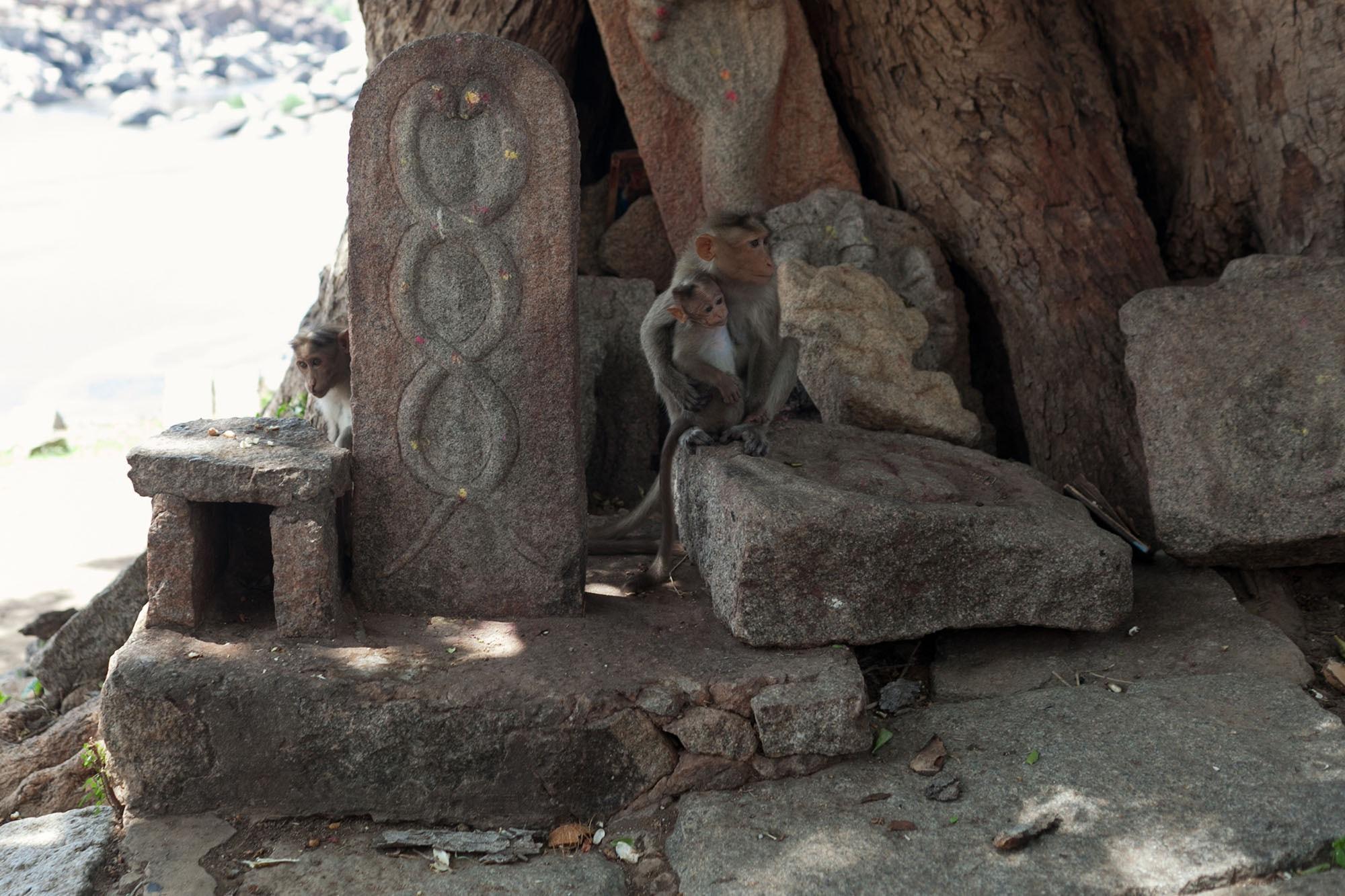 Hampi, India.