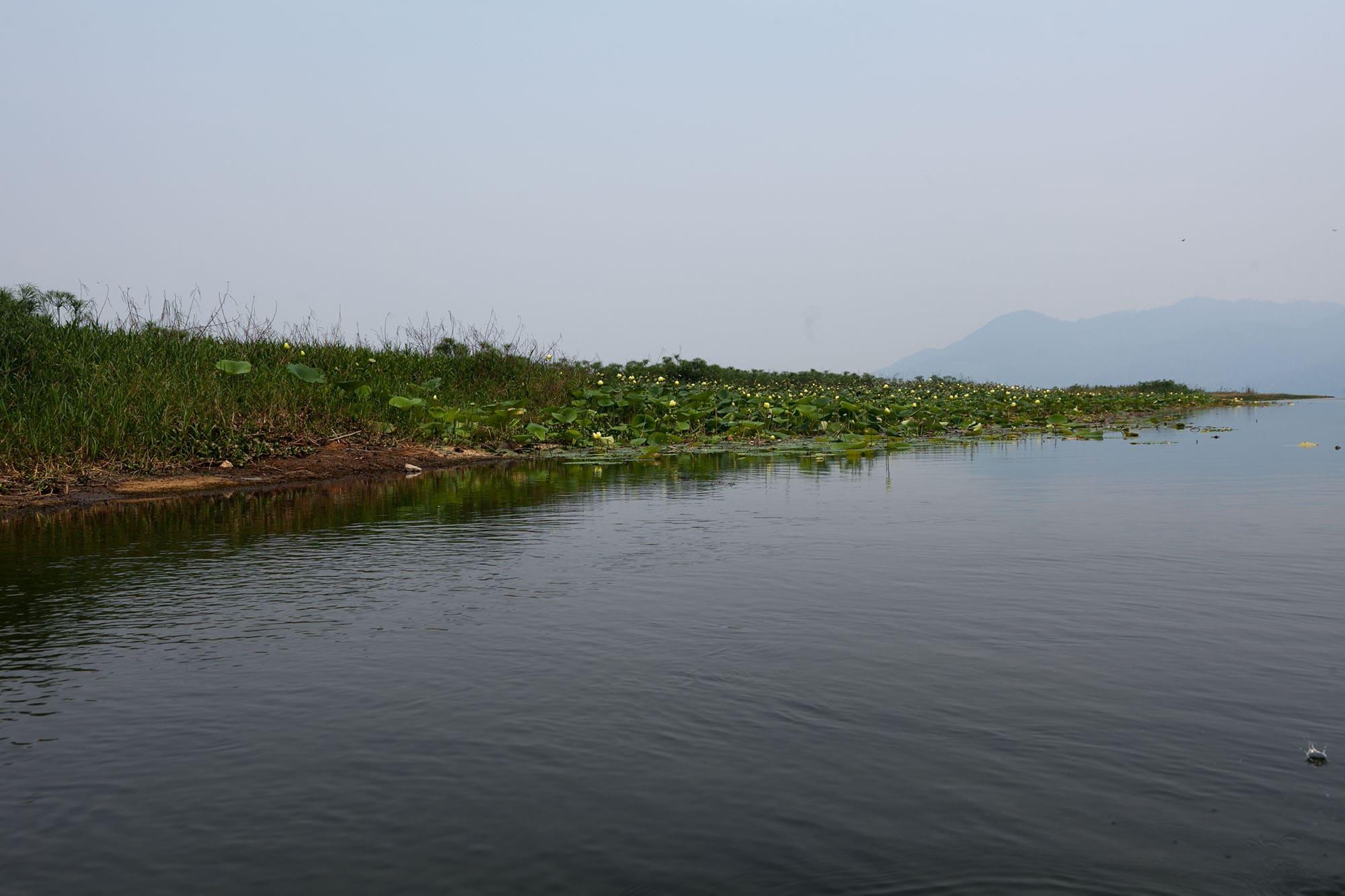 Rowing on the lake in Lago de Yajoa, Honduras