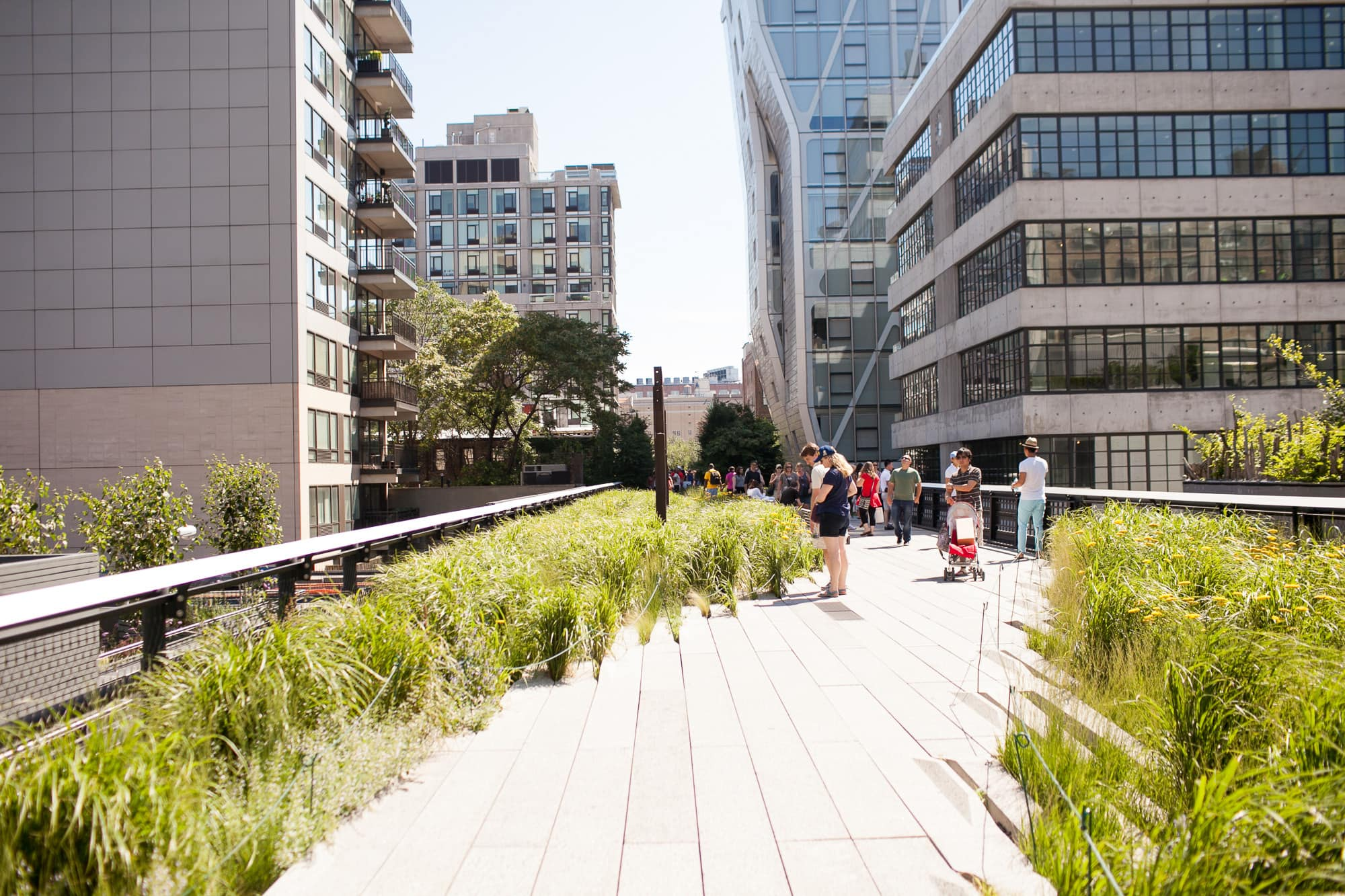 The High Line in New York