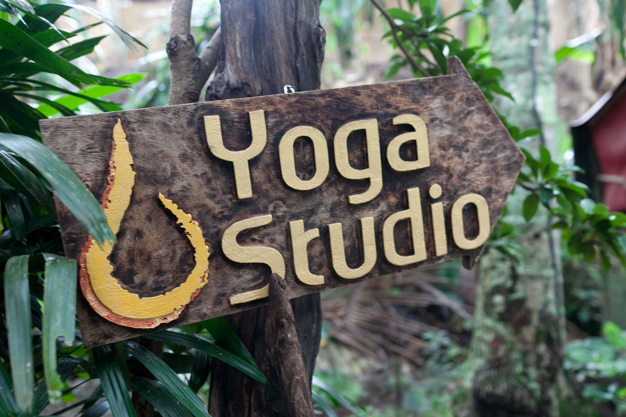 Intro to yoga class at yogabarn in Ubud, Bali, Indonesia.