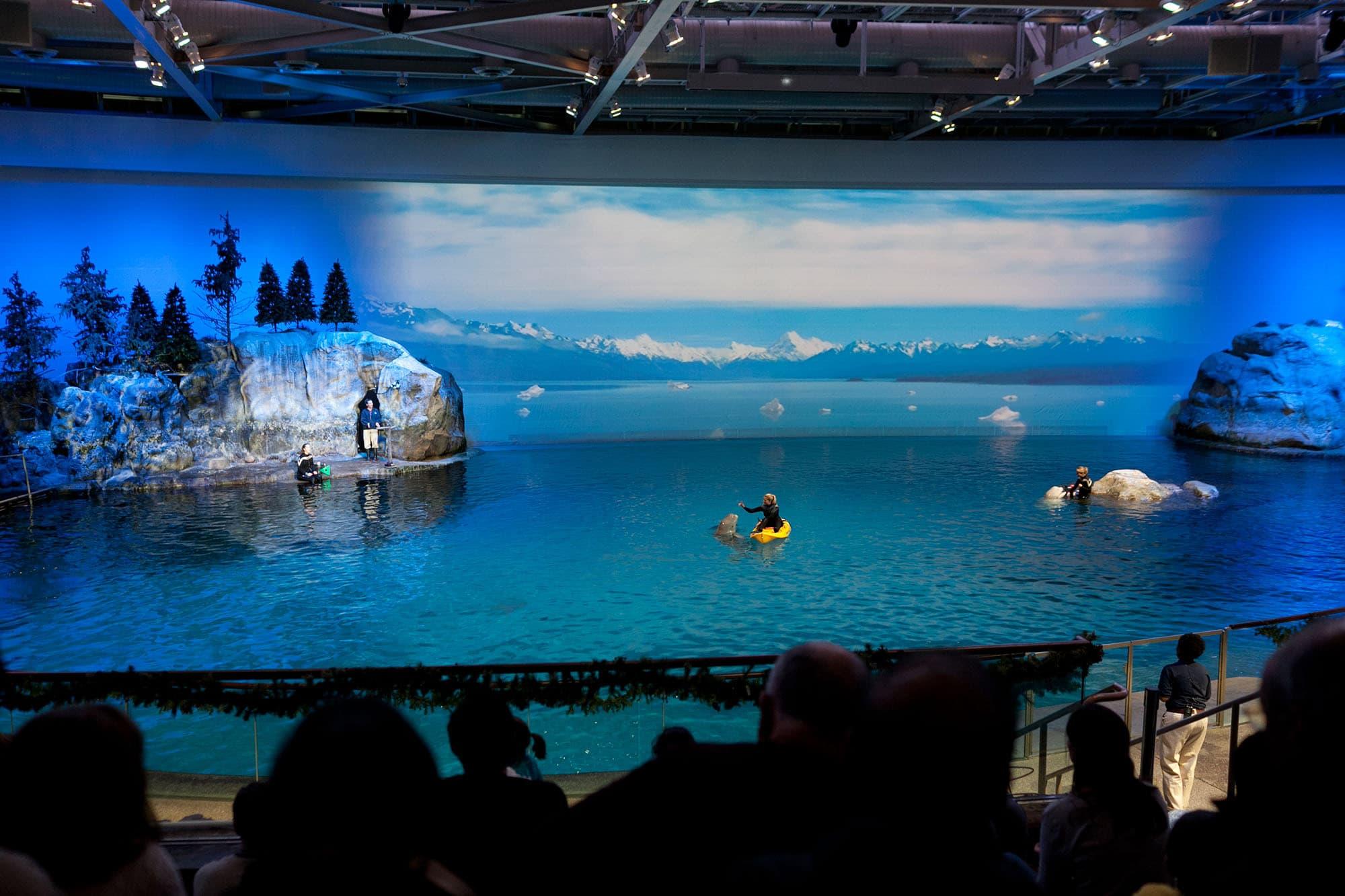 Shedd Aquarium in Chicago, Illinois.