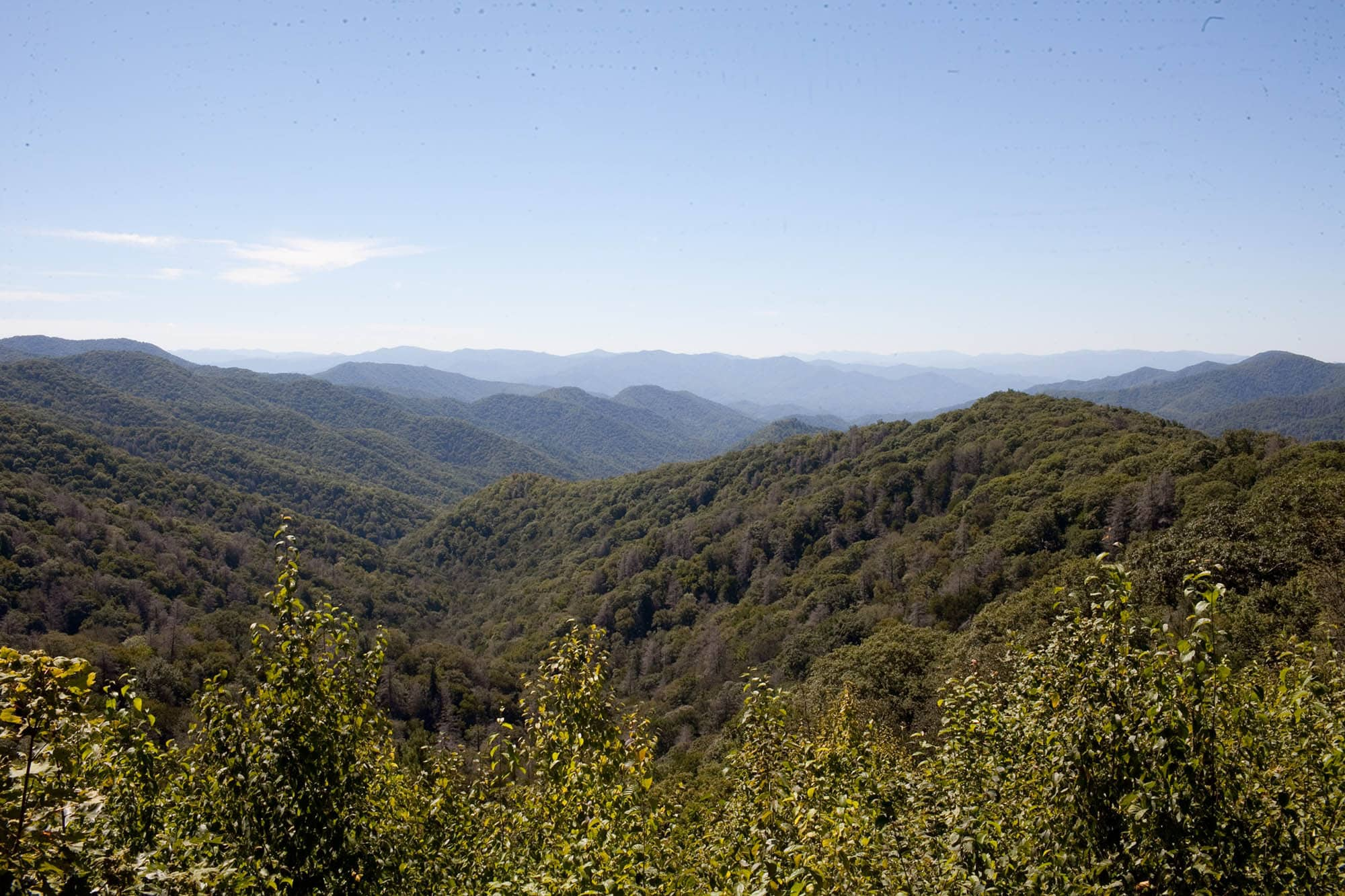 Virginia/North Carolina Road Trip - Driving through the Great Smoky Mountains