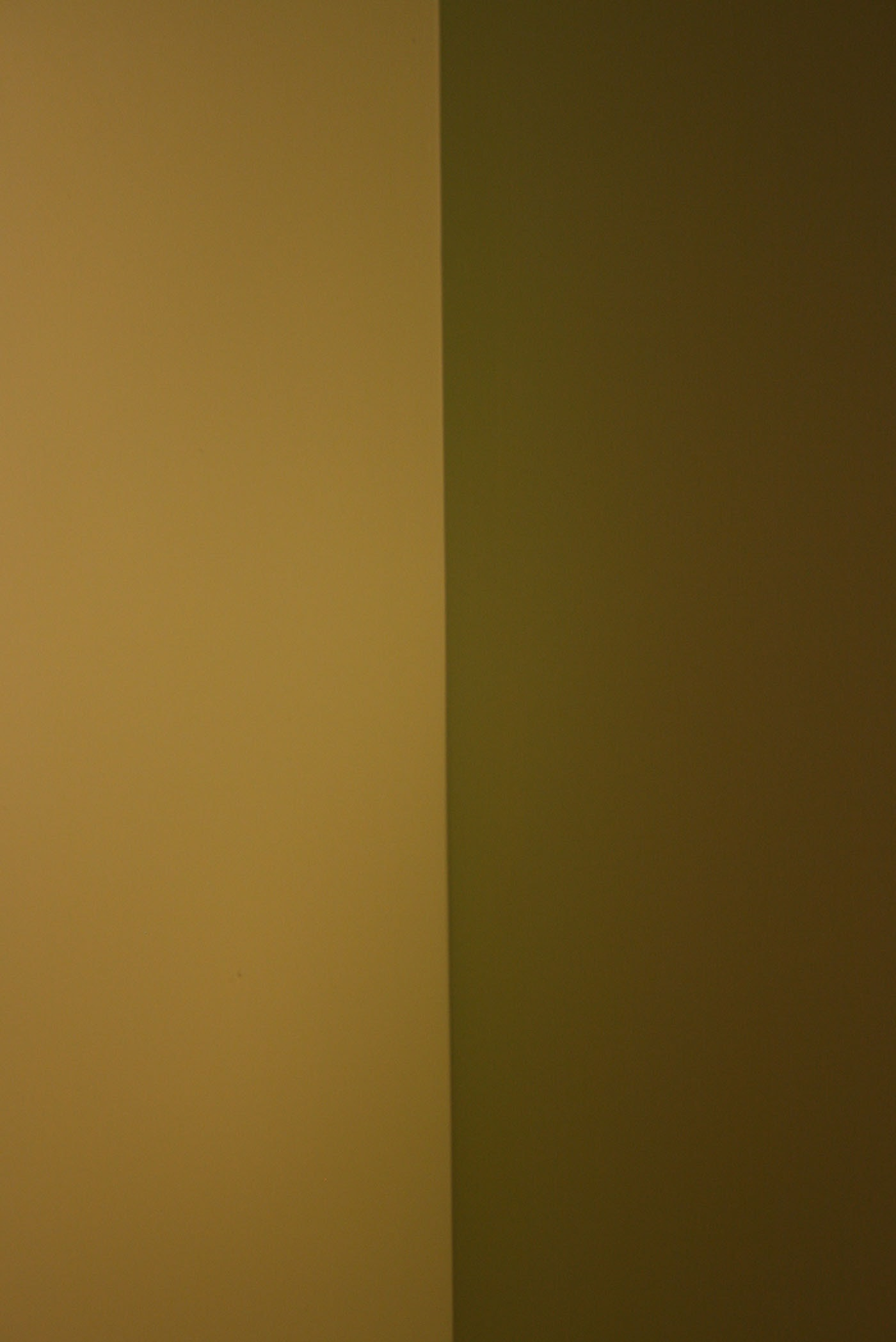 Shades of Green - where the wall meets the ceiling.