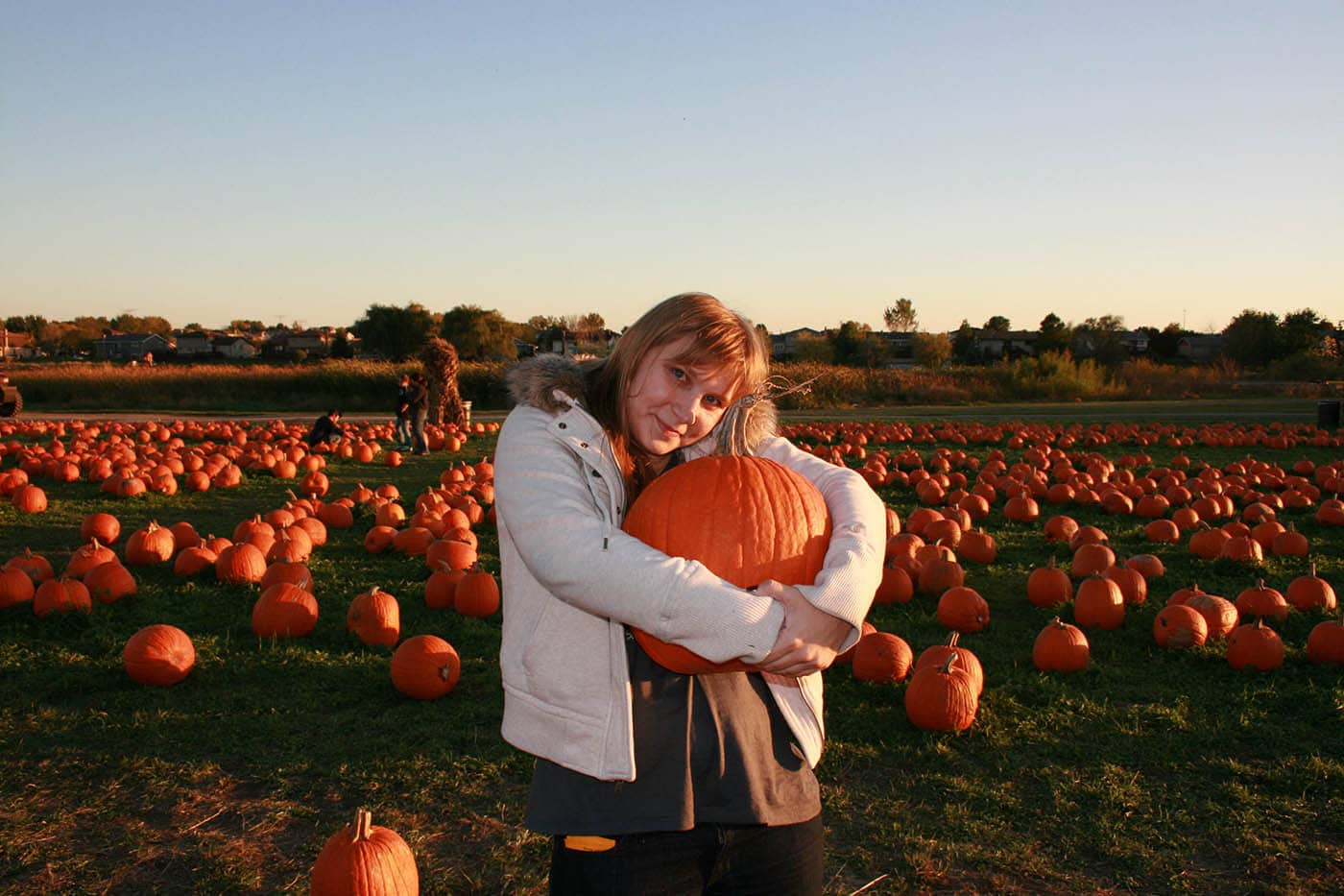 Bengtson's Pumpkin Farm in Homer Glen, Illinois.