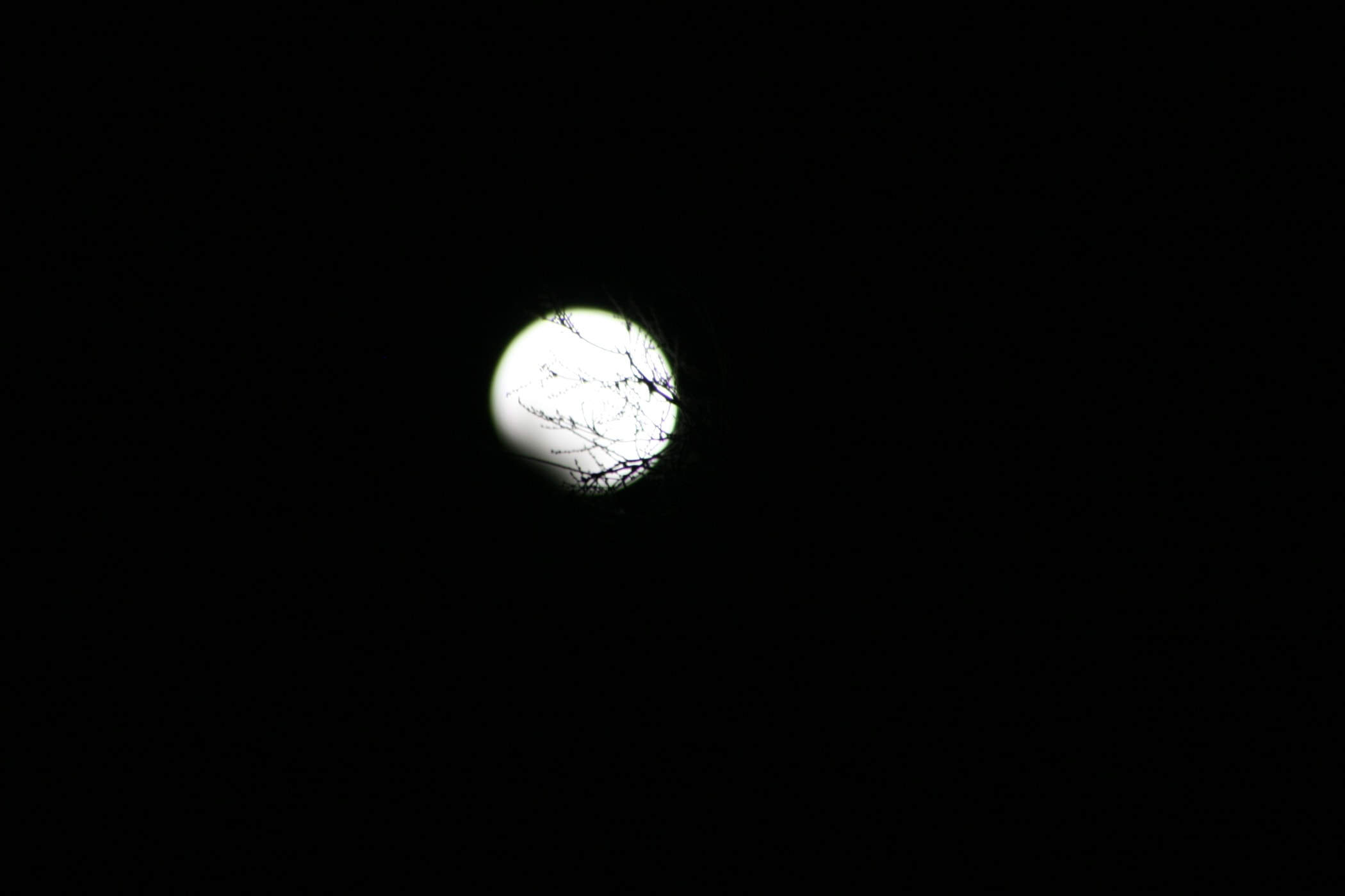 2008 lunar eclipse.