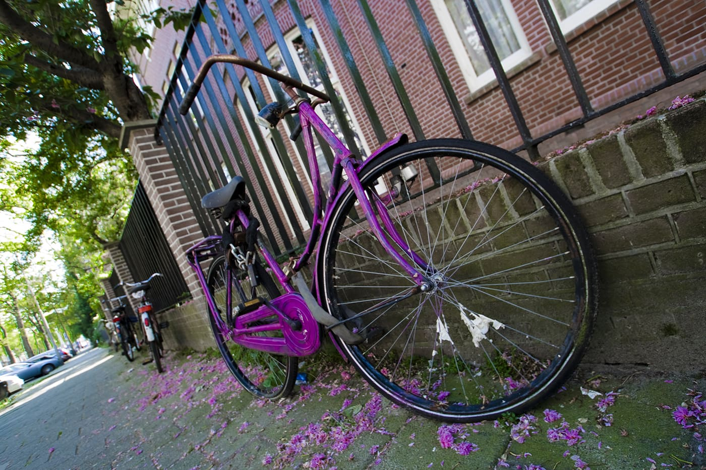 Purple bicycle in Amsterdam, The Netherlands.