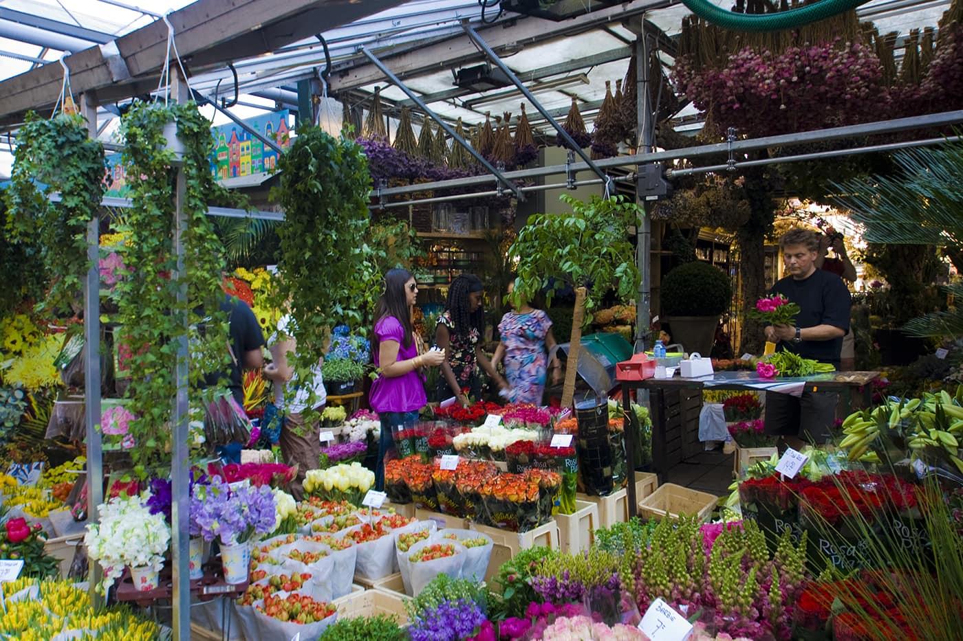 Bloemenmarkt flower market in Amsterdam.