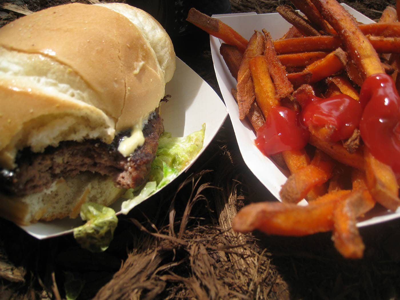 Taste of Chicago: Steak Burger with Blue Cheese and mustard sauce (Tutto Italiano), Hand-cut Sweet Potato Fries (Hashbrowns)