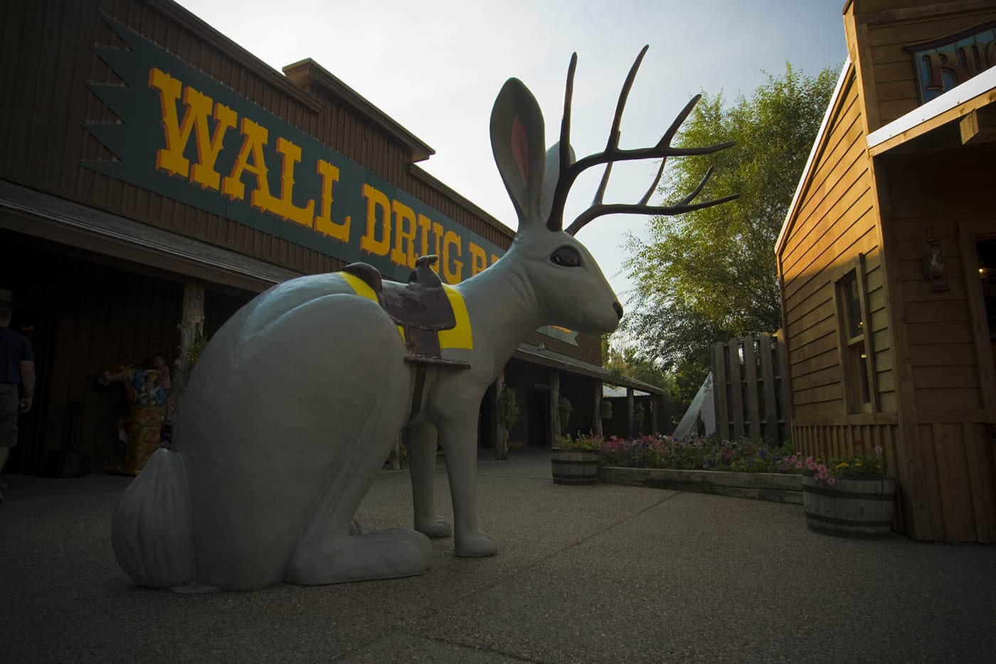 Jackalope at Wall Drug Store in Wall, South Dakota. Labor Day Chicago to Mount Rushmore Road Trip.