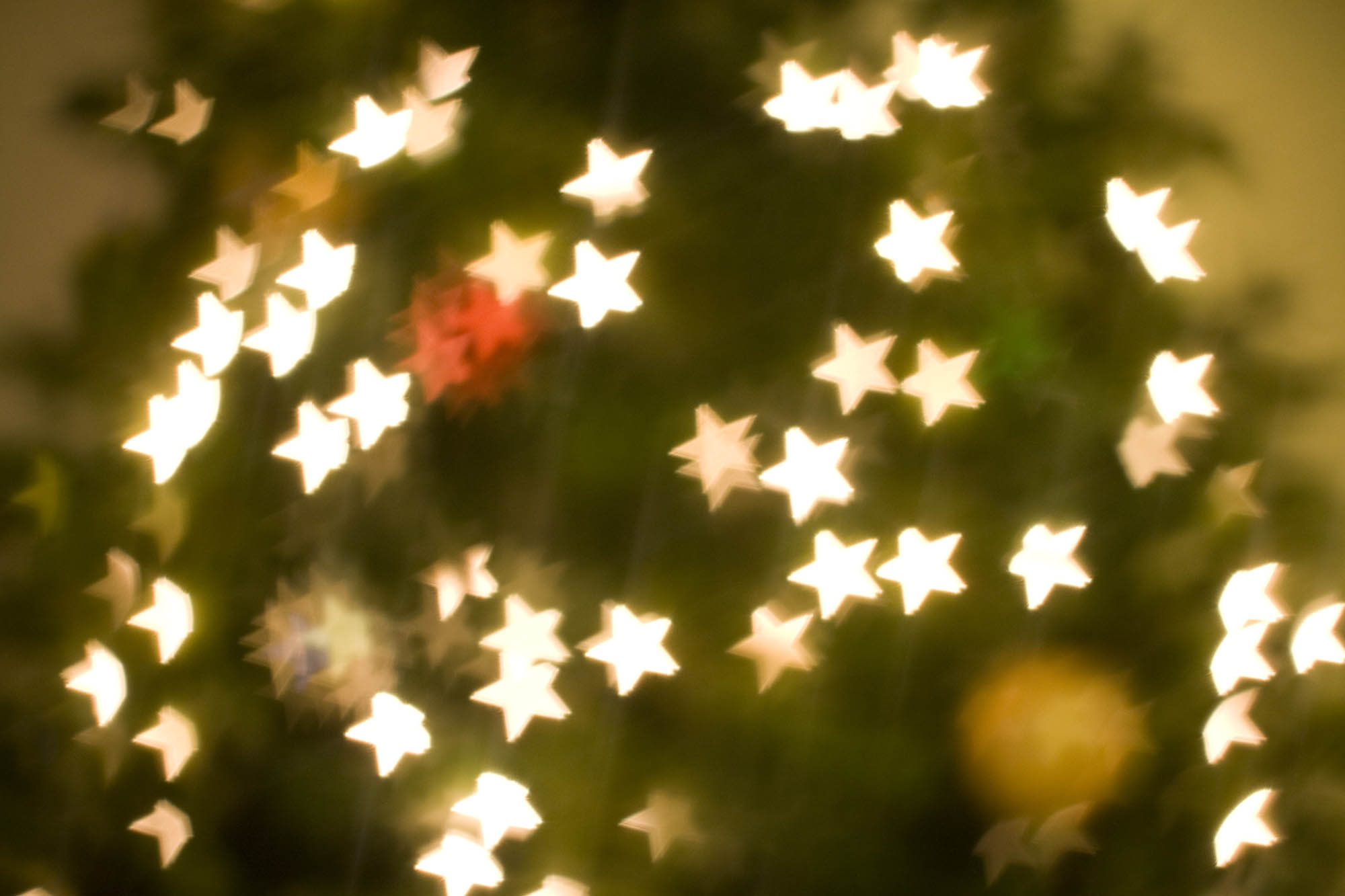 Christmas tree photos with a homemade bokeh star lens