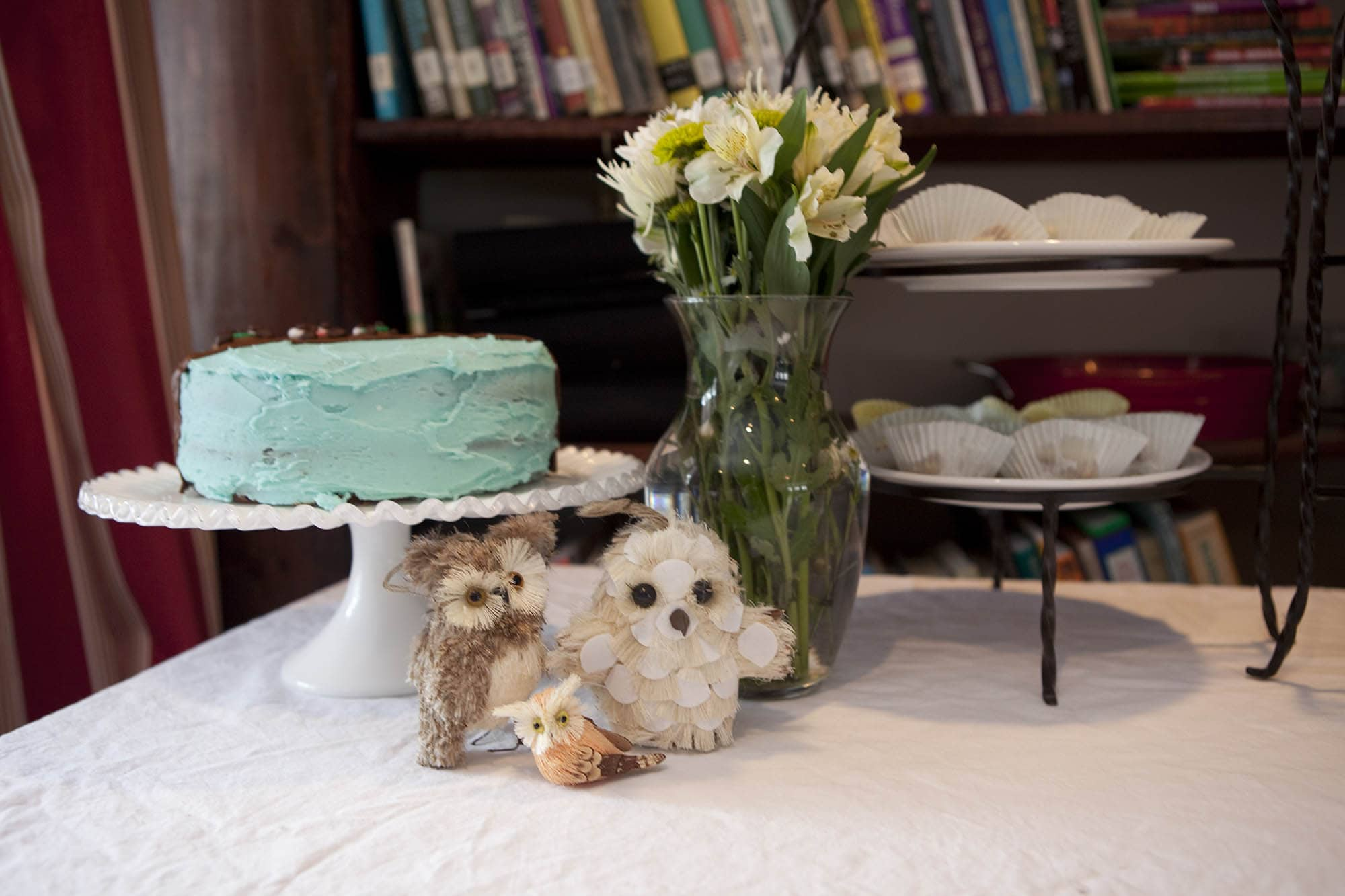 Jen's owl-themed baby shower