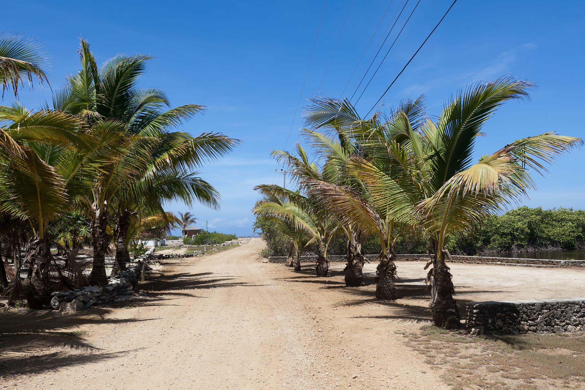 Utila, Bay Islands, Honduras