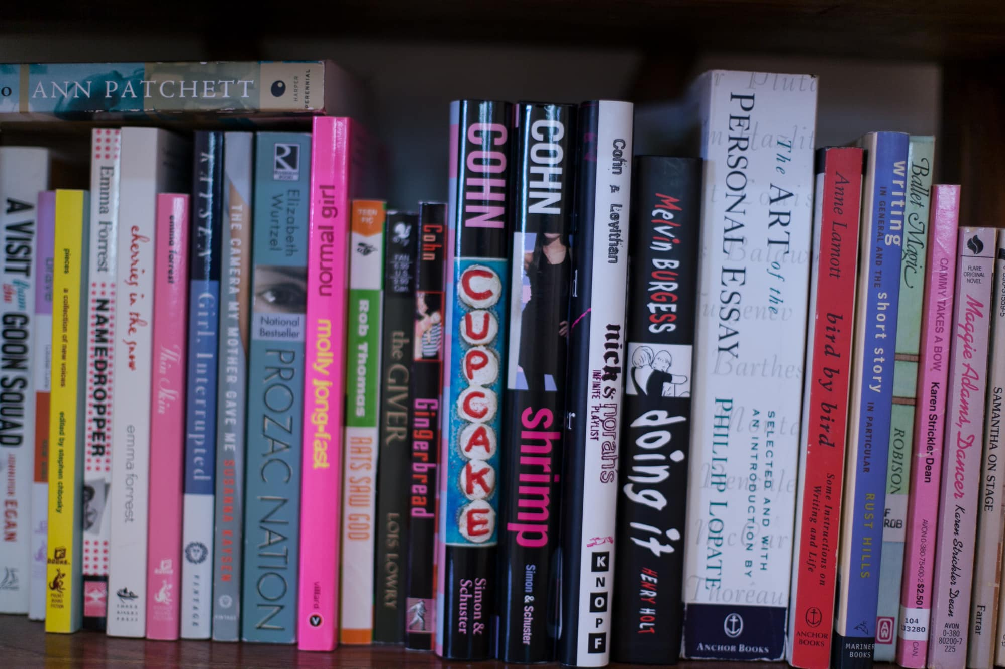 Young adult books on my bookcase.