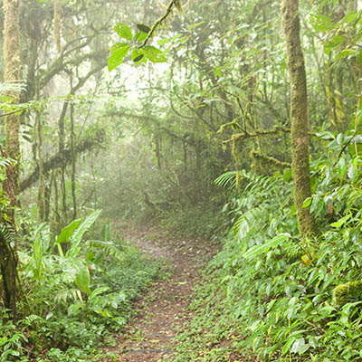 Travel to Costa Rica - Travel Stories from Costa Rica.