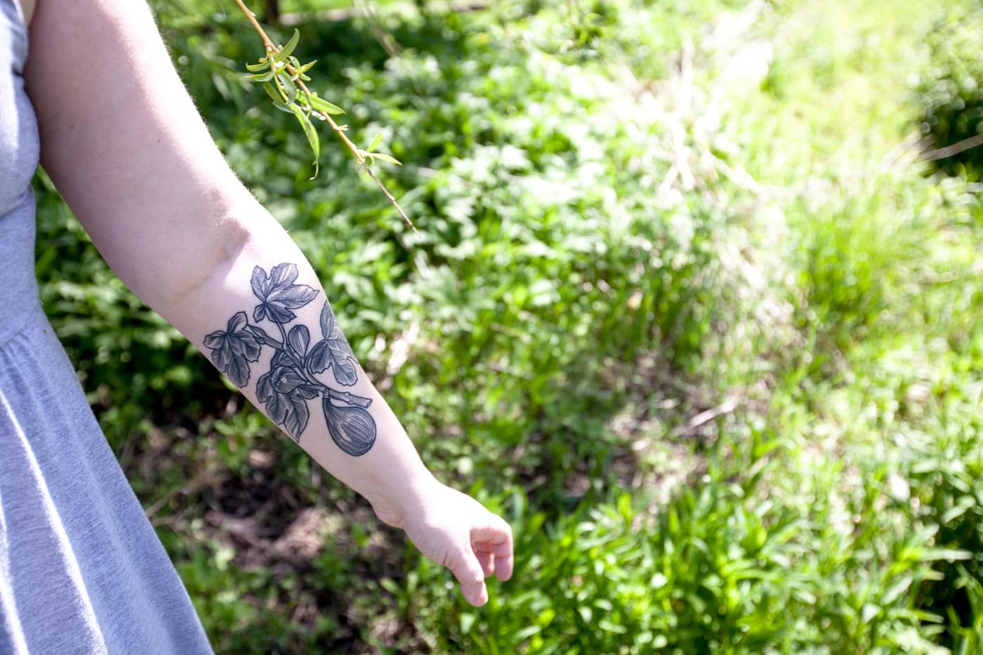 Life List #187: Get a fig tattoo. (Inspired by Sylvia Plath's The Bell Jar.) | Tine DeFiore — Black Oak Tattoo