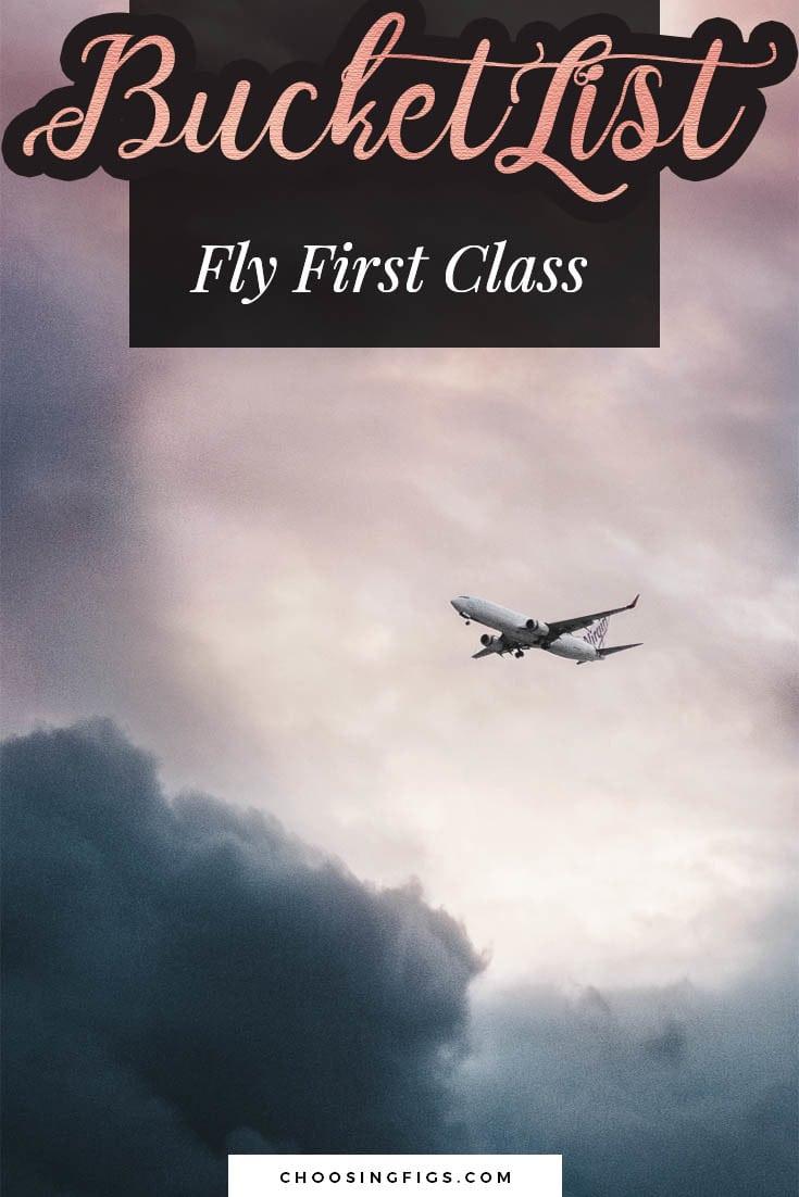 BUCKET LIST IDEAS: Fly First Class.