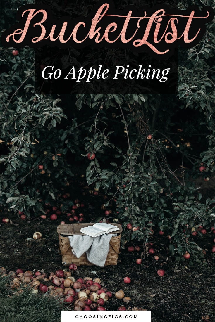 BUCKET LIST IDEAS: Go apple picking.