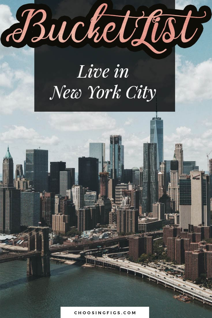 BUCKET LIST IDEAS: Live in New York City.