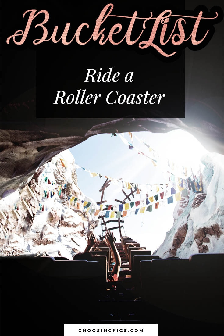 BUCKET LIST IDEAS: Ride a roller coaster.