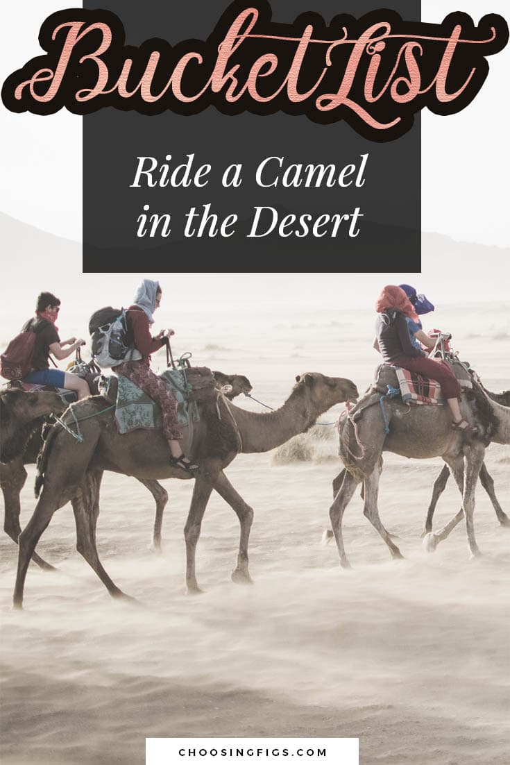 BUCKET LIST IDEAS: Ride a camel through the desert.