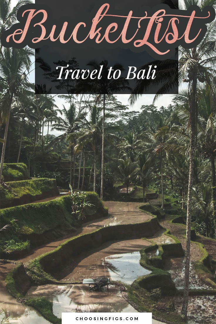 BUCKET LIST IDEAS: Travel to Bali.