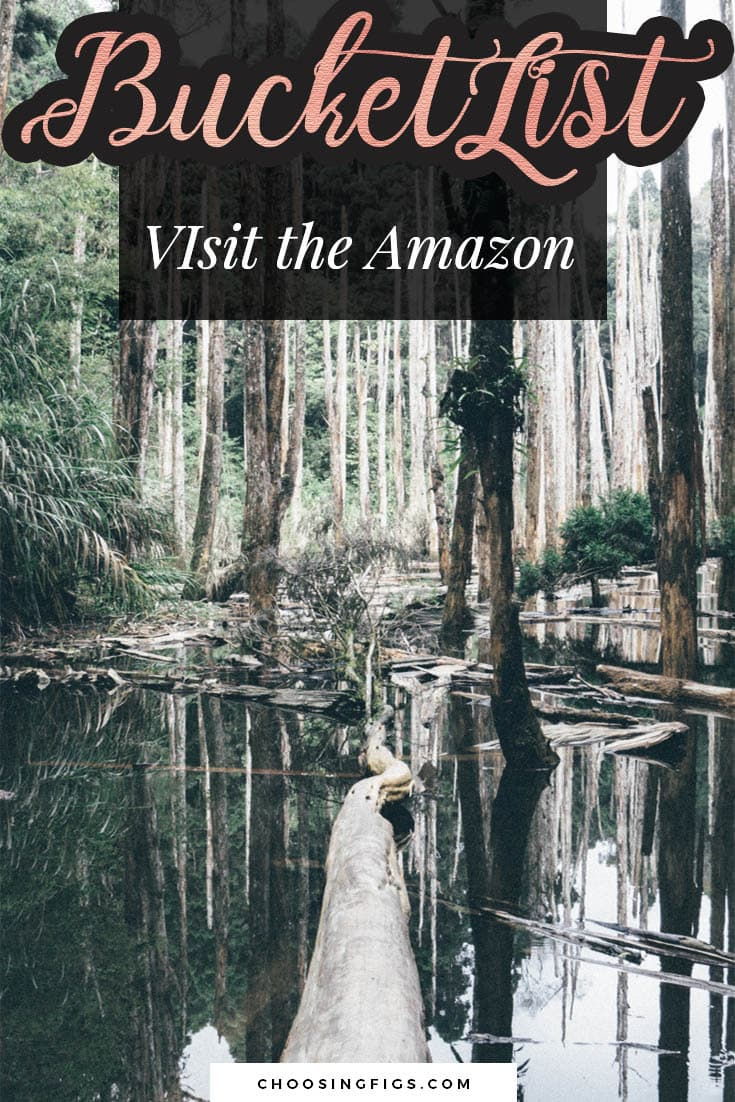 BUCKET LIST IDEAS: Visit the Amazon.