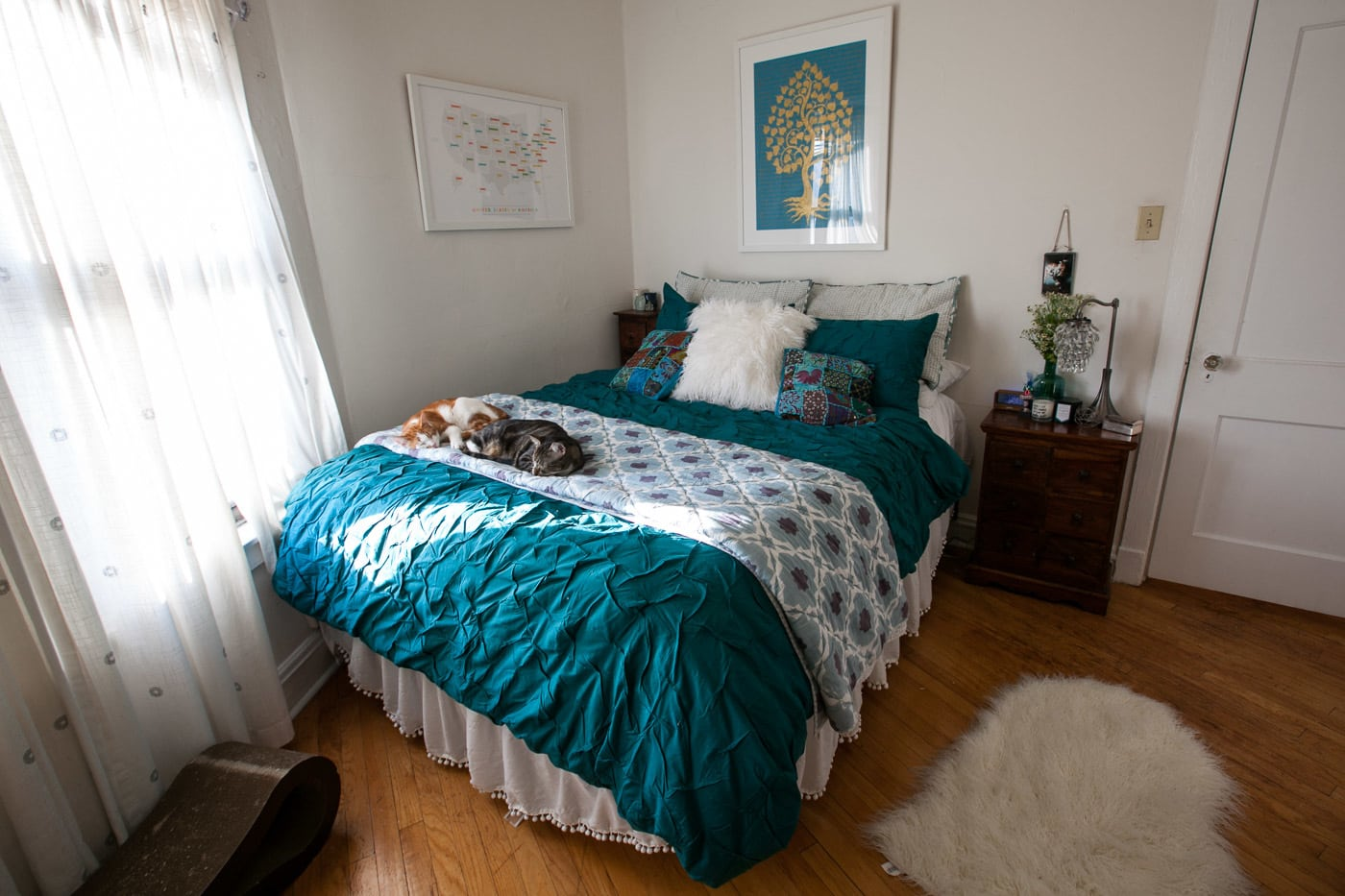 My new bedding: Melyssa teal duvet cover from CB2. Plus cats. Obviously.