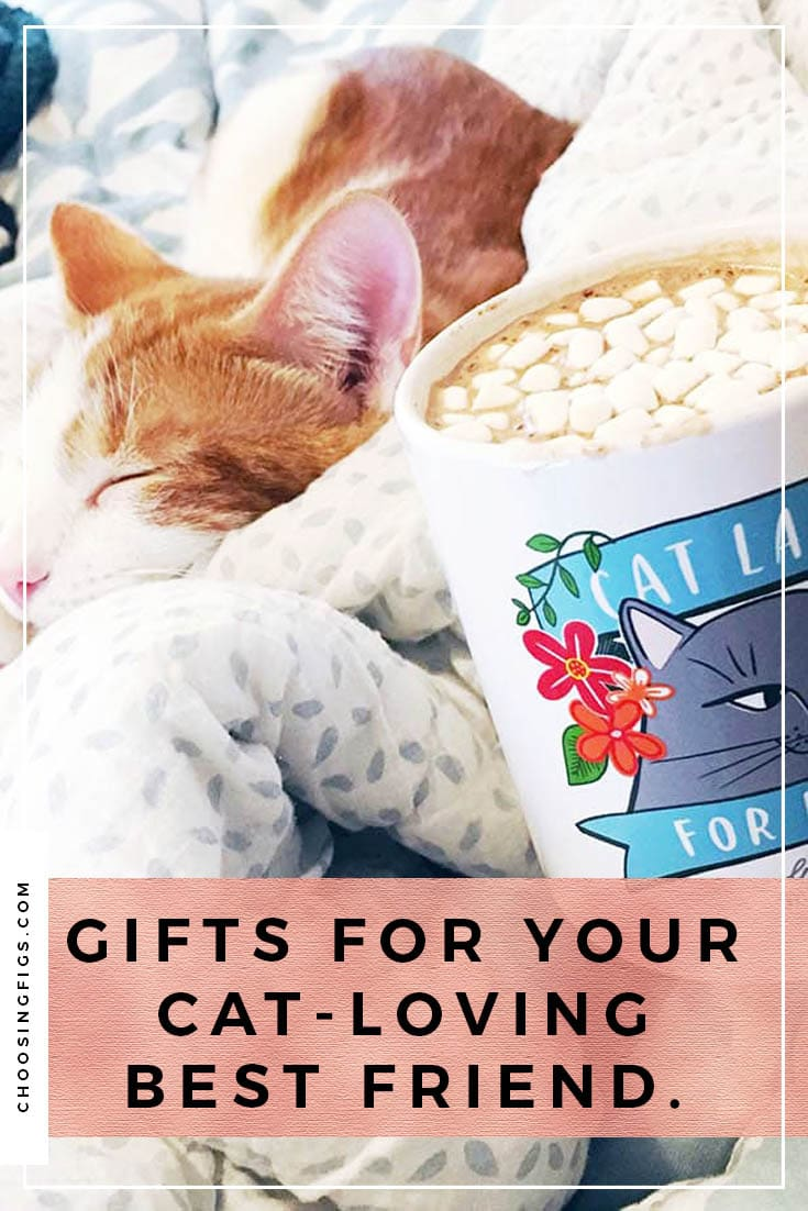 Gifts for your Cat-Loving Best Friend. (Is it me???) Presents for the cat lover in your life. Or for yourself. Or for me...?