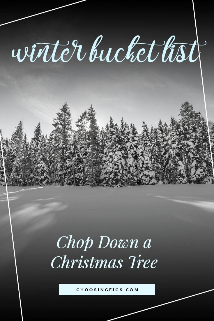CHOP DOWN A CHRISTMAS TREE | Winter Bucket List Ideas: 50 Things to do in Winter