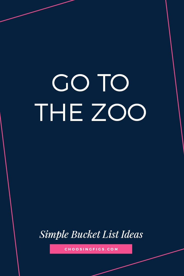 GO TO THE ZOO | 50 Simple Bucket List Ideas to Do Right Now
