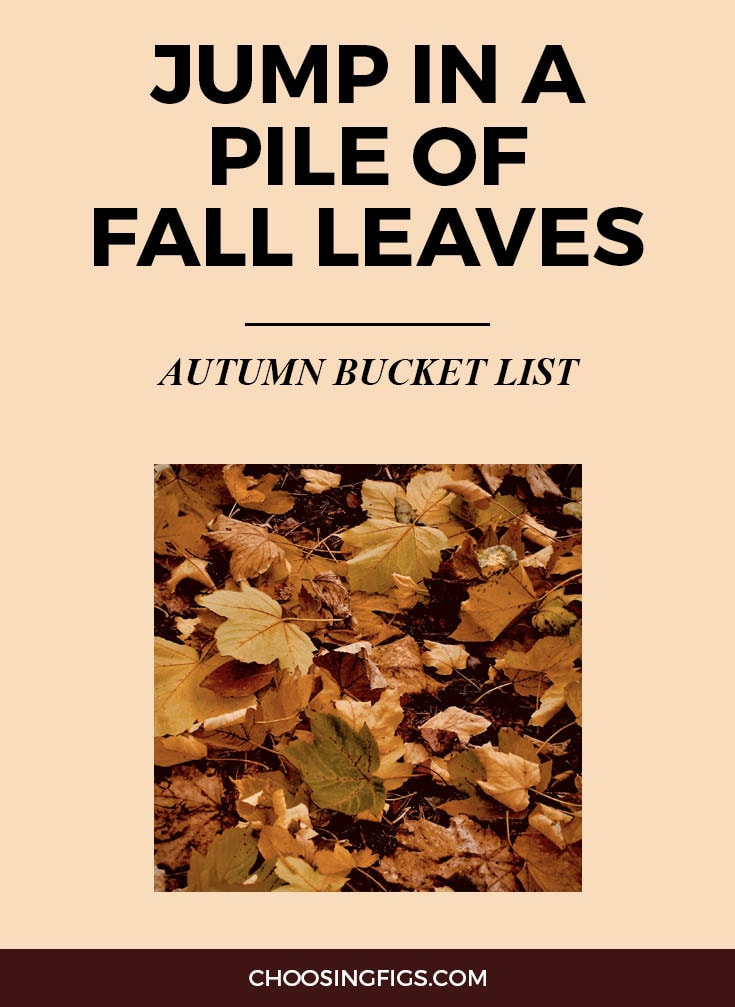 JUMP IN A PILE OF FALL LEAVES | Autumn Bucket List: 50 Things to do in Fall