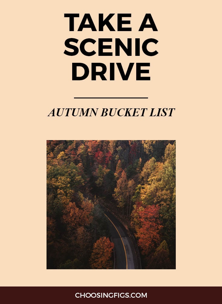 TAKE A SCENIC DRIVE | Autumn Bucket List: 50 Things to do in Fall