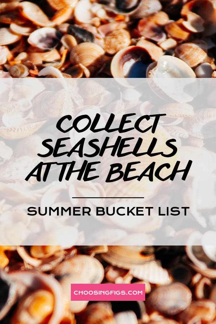 COLLECT SEASHELLS AT THE BEACH | Summer Bucket List Ideas: 50 Things to do in Summer