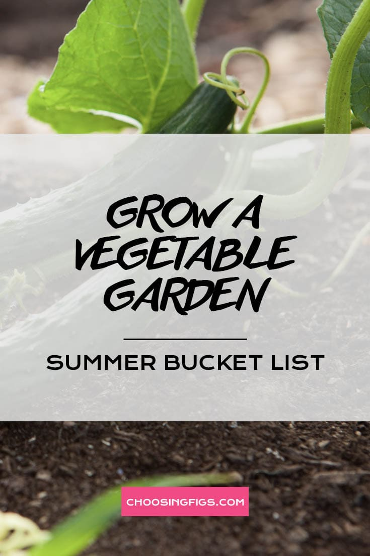 GROW A VEGETABLE GARDEN | Summer Bucket List Ideas: 50 Things to do in Summer